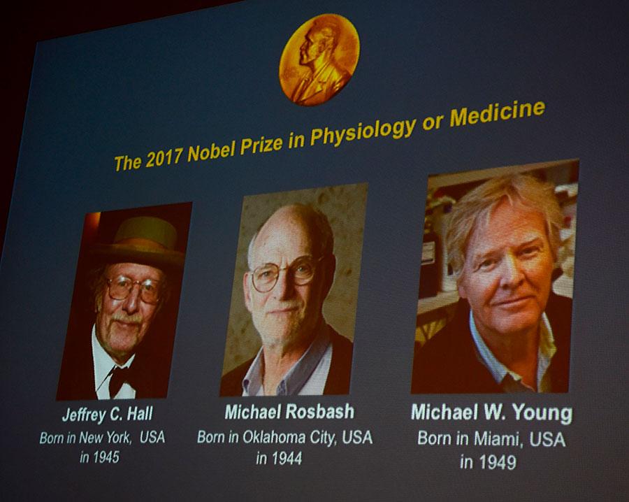 三名美國遺傳學家因在調節生物晝夜節律的分子機制方面的成就,獲得2017年諾貝爾生理學與醫學獎。(JONATHAN NACKSTRAND/AFP/Getty Images)