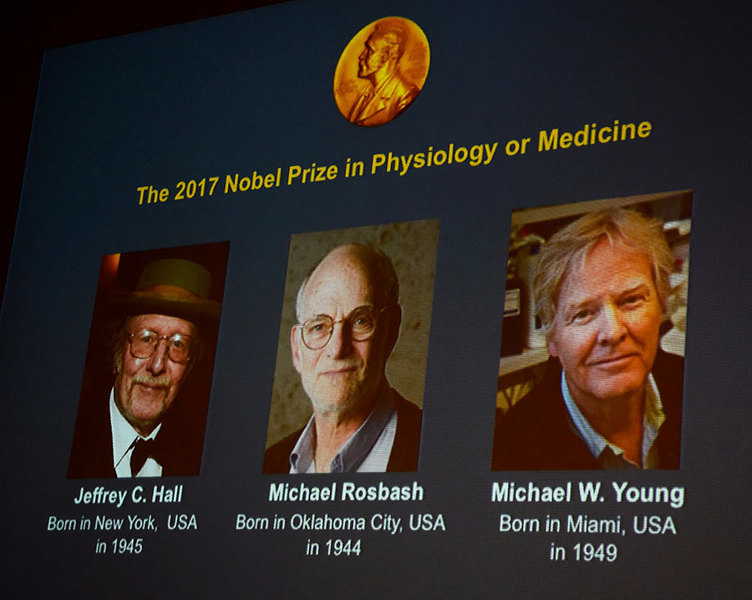 揭生物鐘奧秘 美三遺傳學家獲諾貝爾醫學獎