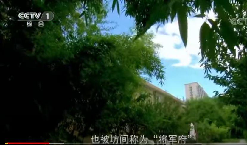 中共前總後勤部副部長谷俊山在北京太平路的「將軍府」。(視像擷圖)