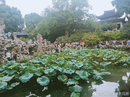 圖為十一長假的第二天,遊客在蘇州景區。(網絡圖片)