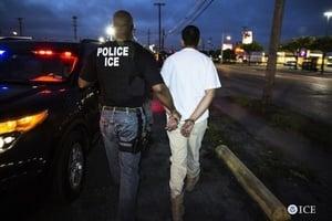 加州簽庇護法 無阻美移民局依法抓非法移民