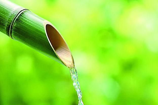 大麥茶的鄉野進化史