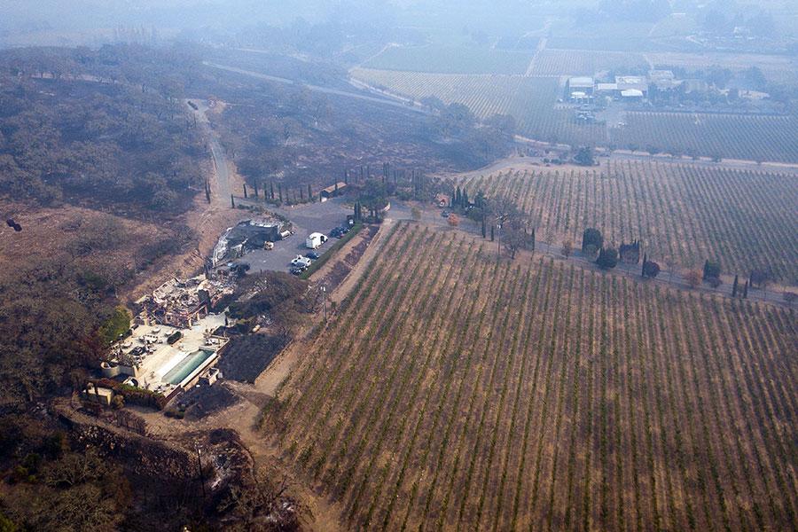 火災最嚴重的地區是被稱為「葡萄酒之鄉」的納帕縣和索諾馬縣。圖為納帕。(ELIJAH NOUVELAGE/AFP/Getty Images)