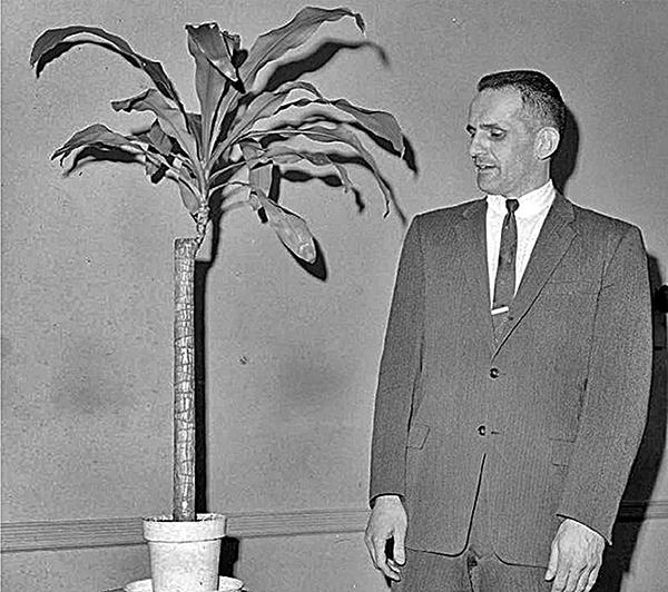 巴克斯特和當初作實驗的牛舌蘭。