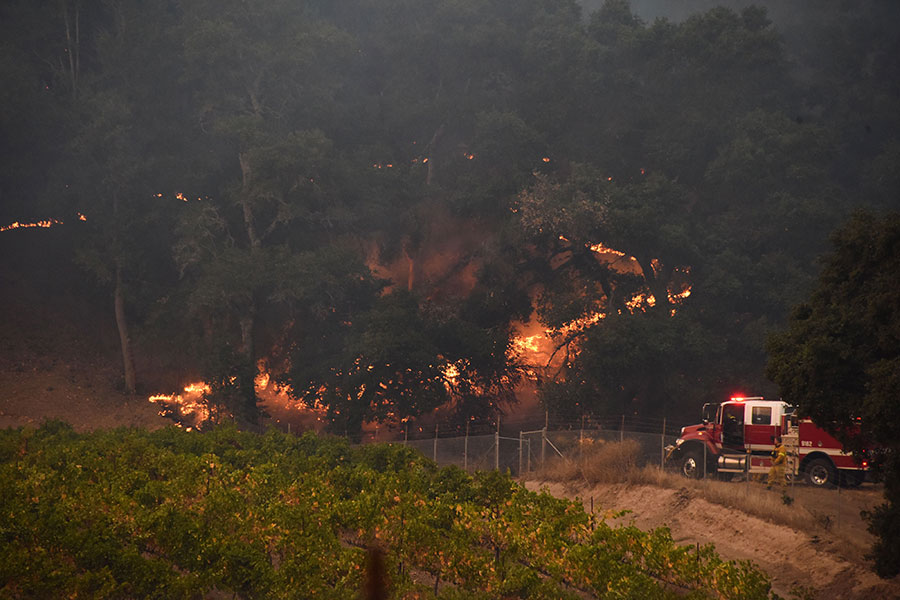 消防員在撲救索諾瑪縣葡萄園附近的山火。(ROBYN BECK/AFP/Getty Images)