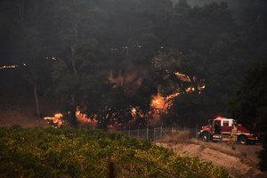 加州史上最致命山火增至36死 滅火有進展