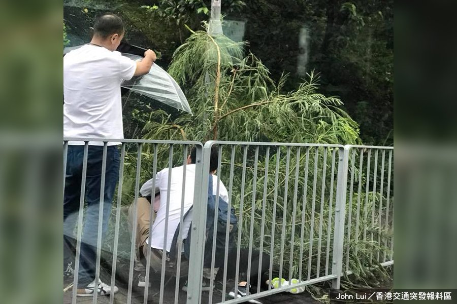 今早近7時,在強風的吹襲下,荃灣荃景圍近潭頂新村一個停車場對開行人路有大樹倒塌,擊中一名女子頭部。(John Lui/香港交通突發報料區)