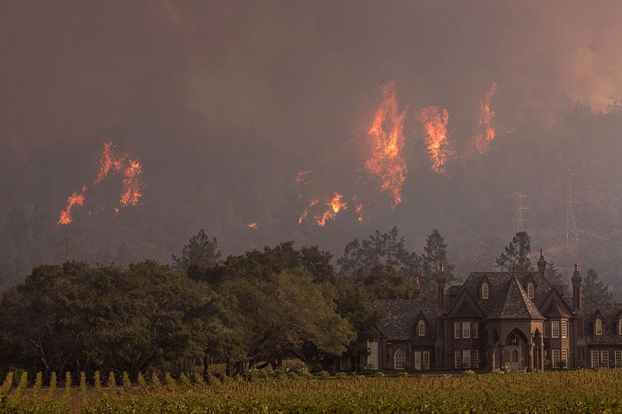 加州目前有9000多人參與滅火行動,包括消防員和數千名志願者。連日來,大量志願者前往加州參與滅火工作,甚至加拿大和澳洲的消防員也參加了滅火。(David McNew/Getty Images)