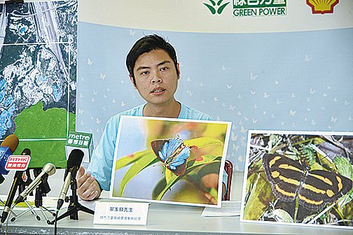 綠色力量的蝴蝶普查發現,大欖郊野公園邊陲共錄得127種蝴蝶,佔全港蝴蝶物種總數近五成,當中有9種屬「非常罕見」。(宋碧龍/大紀元)
