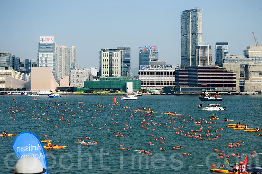 香港經典戶外游泳比賽──維港渡海泳,重返維多利亞港中央作賽。主辦單位稱有近3,000人參加。(宋碧龍/大紀元)