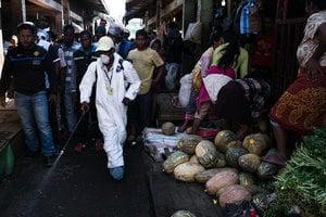 非洲爆發鼠疫百人喪生 九地區高度警惕