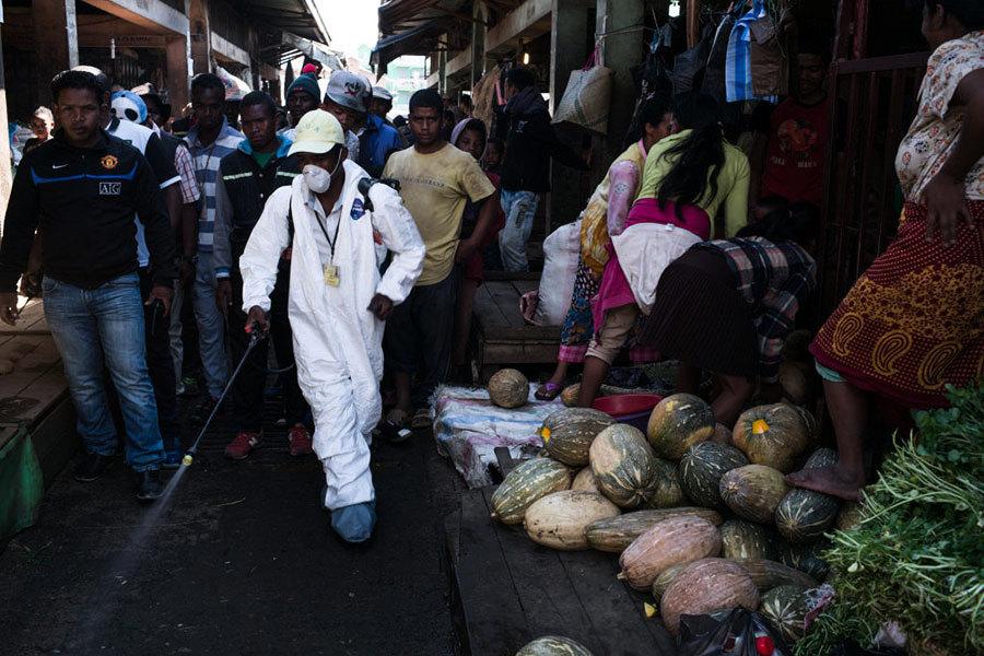 馬達加斯加五十年最嚴重鼠疫 憂變種難治