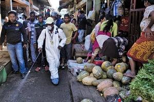 非洲鼠疫疫情爆發 百餘人喪生