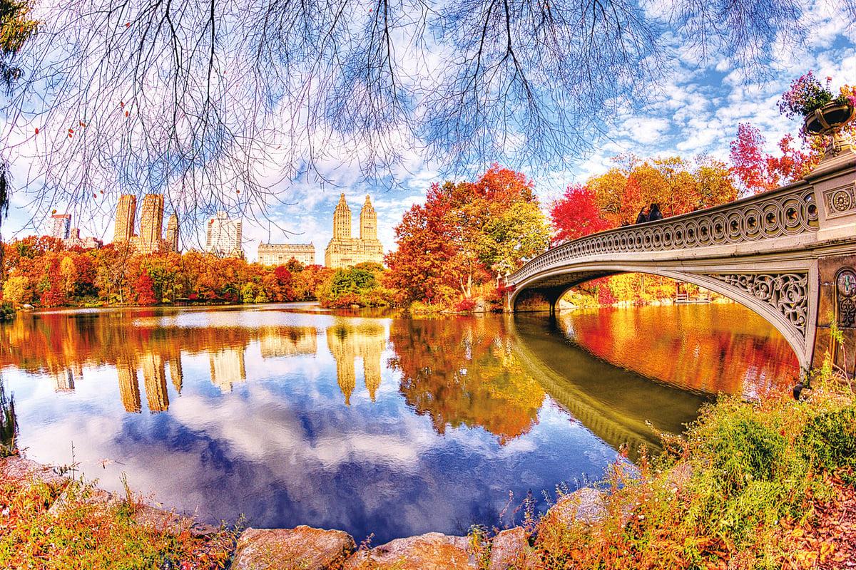 在曼哈頓中心彷彿是一片綠洲的中央公園,不管外面交通多繁忙,城市多吵雜,只要一踏進中央公園的那一刻就能把一切隔絕在外,漫步在充滿楓紅的步道,享受在這繁忙都市裏的一絲寧靜。(網絡圖片)