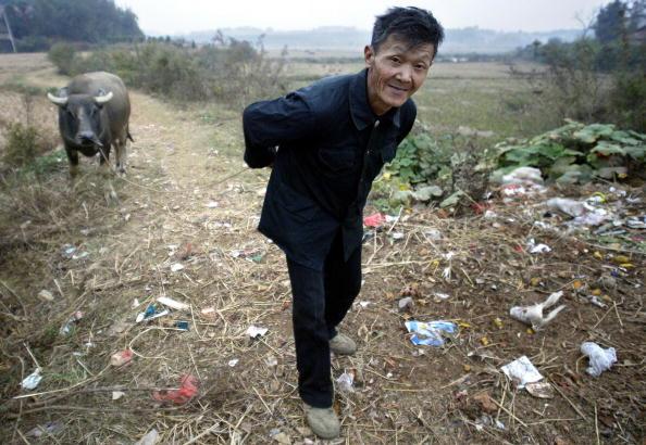 湖南省一位貧困的農民沿著佈滿垃圾的小路放牛。(AFP/Getty Images)