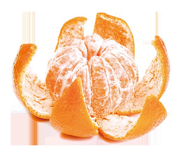 橘子烤著吃不上火兼養顏