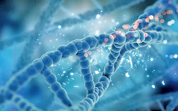 在哺乳動物中,當個體受到壓力時,大腦細胞會出現一種新型表觀遺傳學修飾改變,可誘導神經精神疾病發生。 (網絡圖片)