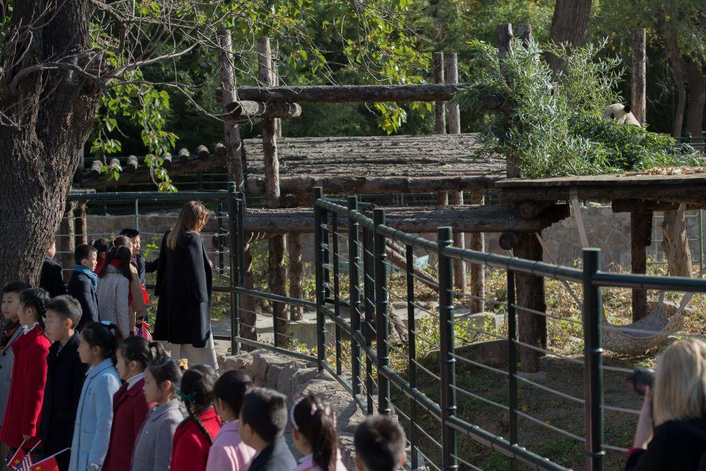 11月10日,美國第一夫人梅拉尼婭參觀北京動物園。(NICOLAS ASFOURI/AFP/Getty Images)