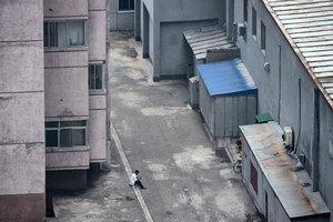 北韓互聯網獨一無二 怪異超乎你的想像