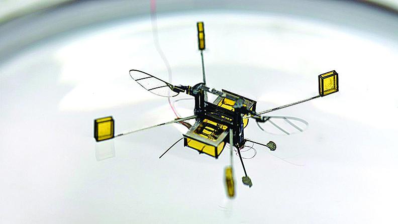 哈佛大學發佈的新款機器蜜蜂(RoboBee)能夠完成先前的老版本無法完成的任務,它會飛行、潛水、游泳,然後再直接從水中升空。(影片截圖)