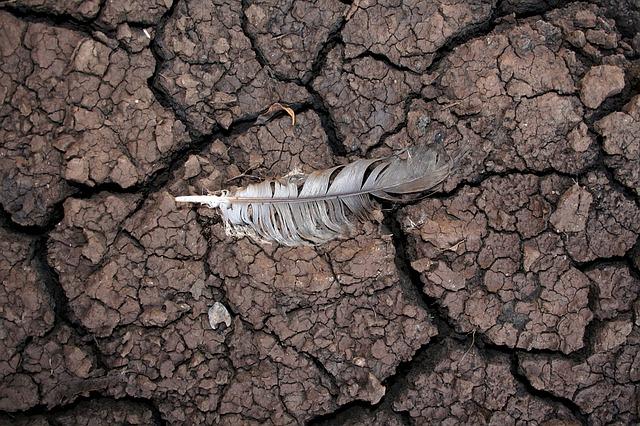 科學家認為:「很快就會因為太遲而不能擺脫災難了,時間已經用完了。」示意圖。(Pixabay)