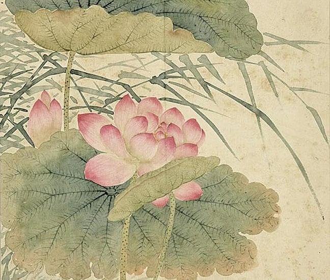 清程琳《蓮花蘆葦》,現藏台北故宮博物院(公有領域)