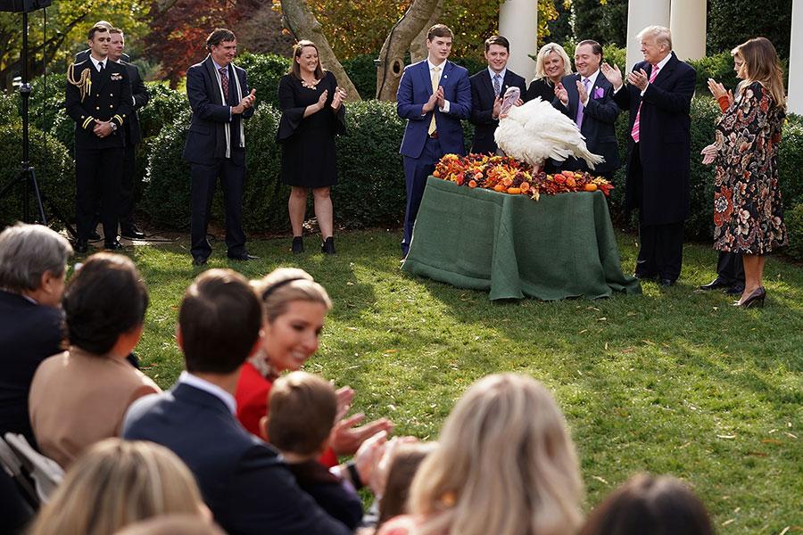周二(11月21日),美國總統特朗普在白宮首次赦免火雞,總統赦免火雞是白宮數十年來的一項傳統。(Chip Somodevilla/Getty Images)