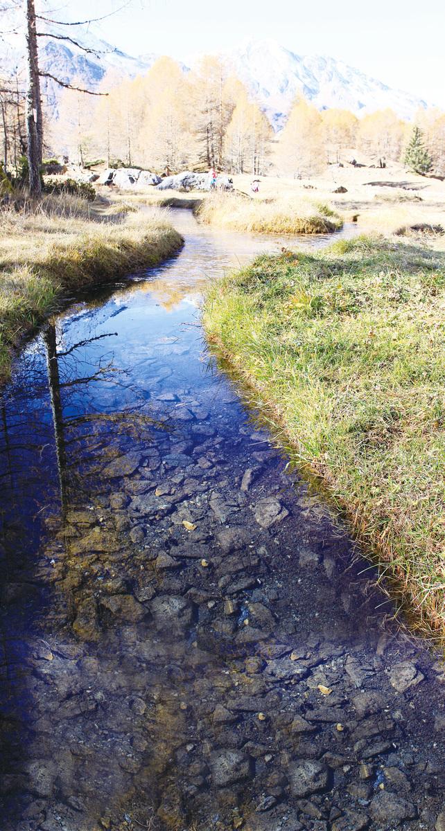 清澈見底的小溪從村前流過。(龔簡/大紀元) 迷人的色彩搭配。(龔簡/大紀元)