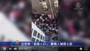 袁斌:從低端人口遭逐到高端幼稚園孩子被性侵