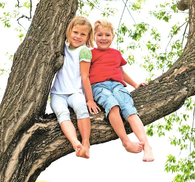 女孩掉進樹洞入仙境 甦醒後疾病痊癒