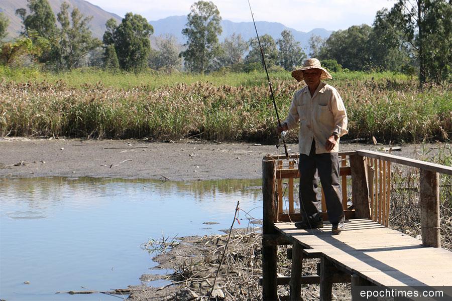 經常前來釣魚的陳伯表示漁塘水位下降時有發生,會繼續在該處垂釣。(陳仲明/大紀元)