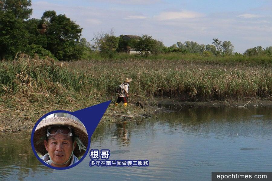 南生圍義工根哥解釋由於河道淤塞,造成倒灌入漁塘的水量不足,導致漁塘水位大幅下降。(陳仲明/大紀元)