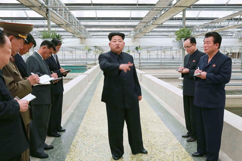 北韓一名匿名脫北者在接受CNN訪問時表示,他相信北韓政權會在10年內垮台,而金正恩剩下的掌權日子也屈指可數。圖為金正恩於2015年5月視察大同江甲魚養殖場。(KNS/KCNA/AFP)