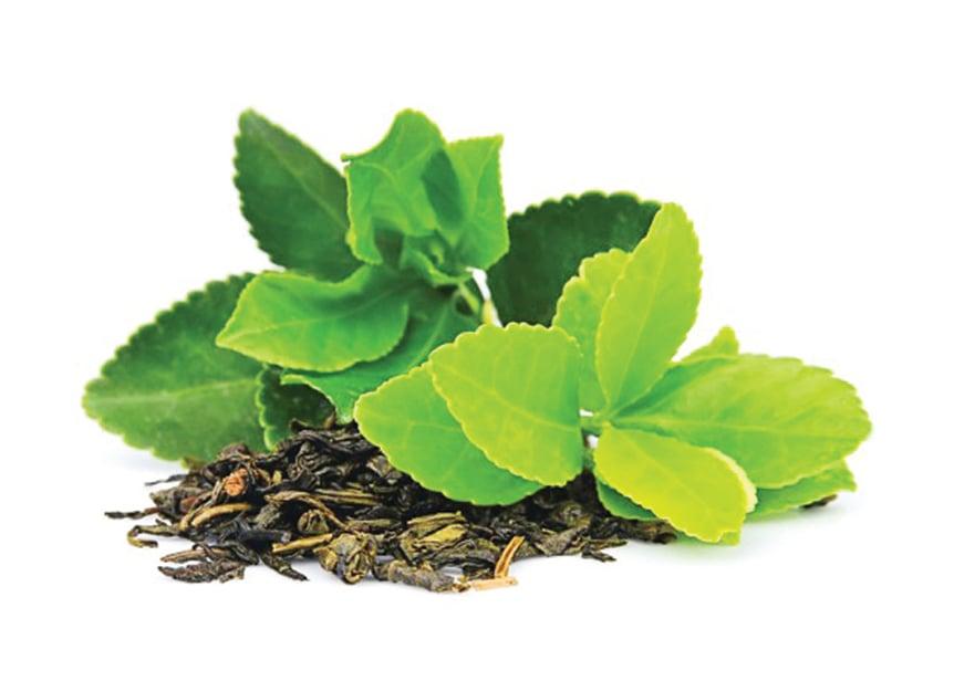古時中國南方茶葉也是重要的聘禮。(Fotolia)