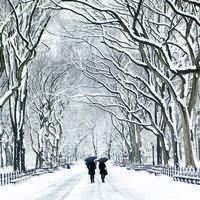 呼喚白雪飄動