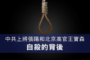 中共上將張陽和北京高官王寶森自殺的背後