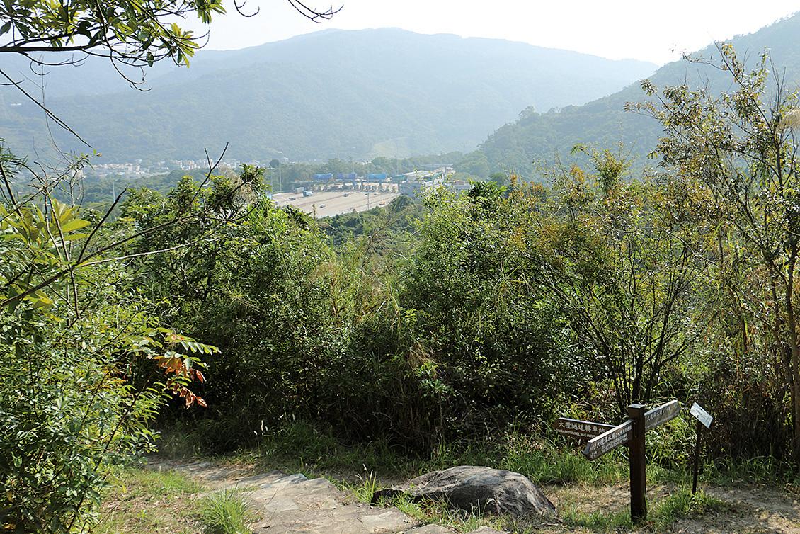 從建屋試點範圍內的行山徑上眺望大欖隧道收費站。沿山徑可見,該區樹林茂密。(陳仲明/大紀元)