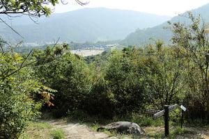 政府研究郊野邊陲地建公屋 專家籲珍惜郊園價值