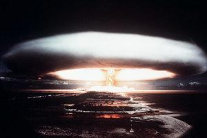 核爆影響深遠 俄松樹上發現60年代核試痕跡