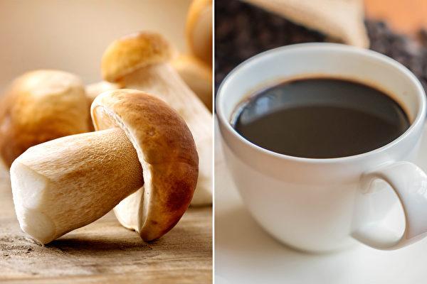 「蘑菇咖啡」熱 比咖啡營養 但有些人不能喝