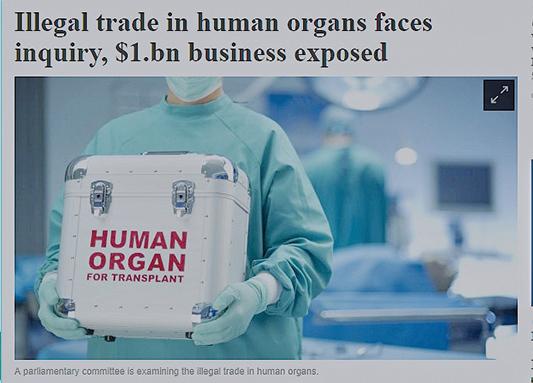 澳洲議會委員會正在審查澳洲是否應該擴充法律條款,將到海外接受可疑器官來源的移植手術劃定為犯罪。(澳洲人報)