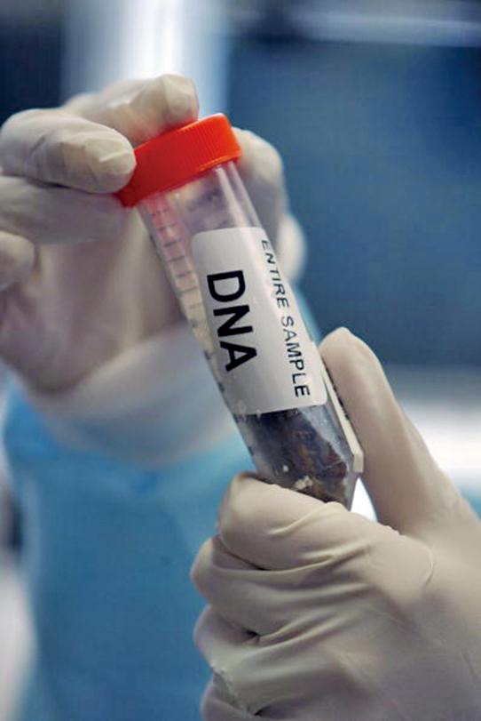 人權觀察(Human Rights Watch)表示,中共有關當局收集新疆地區居民的DNA,嚴重違反國際規範。(Getty Images)
