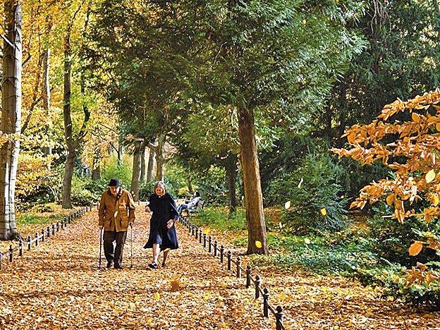 一項英國的最新研究顯示,結婚可以降低罹患癡呆的風險。(網絡圖片)