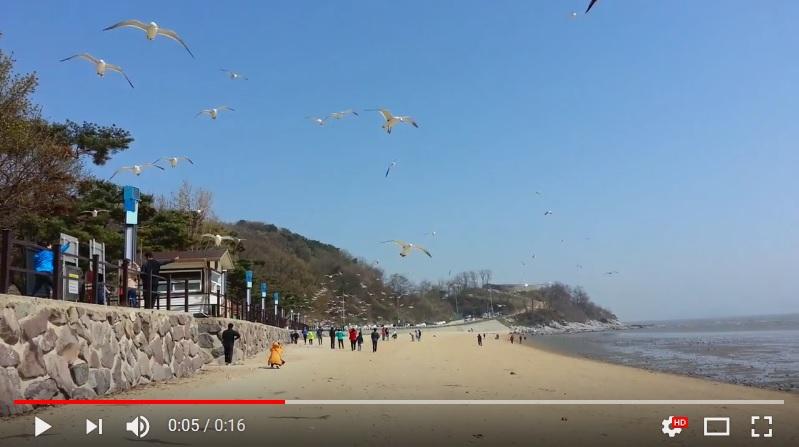 英國《每日郵報》報道稱,北韓士兵將地雷丟入黃海中,使其漂流到南韓江華島的東幕海灘,以期炸傷遊客,製造混亂。圖為東幕海灘一景。(視像擷圖)