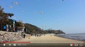 北韓在海上丟地雷 使其漂到南韓海灘傷人