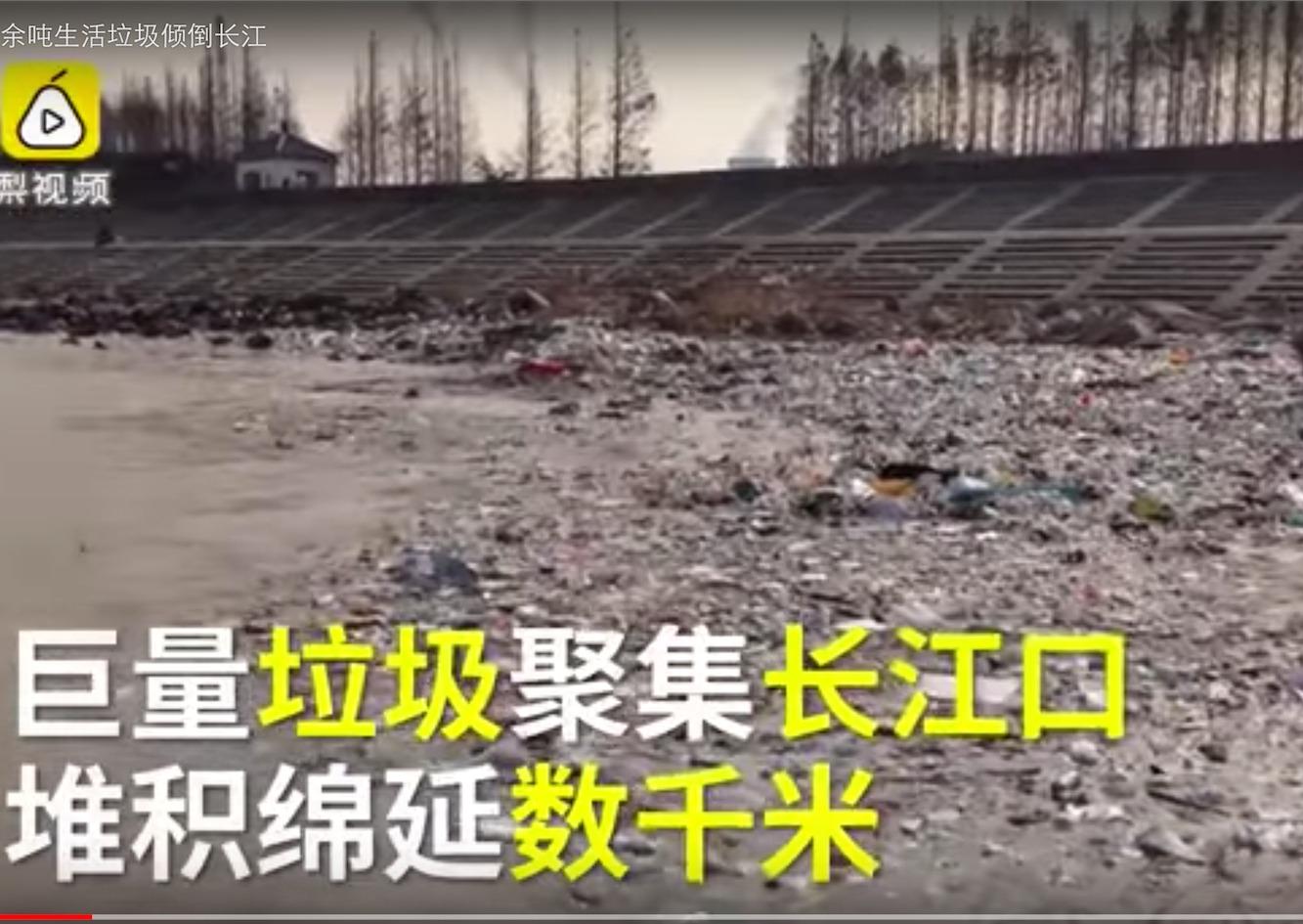 江浙兩地垃圾非法傾倒案涉及的超過3萬噸有害垃圾曾對當地生態環境造成嚴重破壞。(視像擷圖)