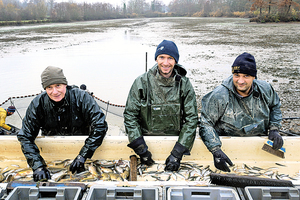 堅守傳統法國東布漁民在冬季捕魚