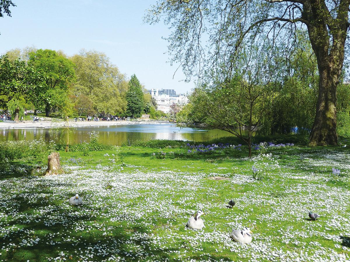 聖詹姆士公園。(維基百科)