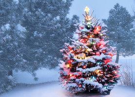 中共抵制過聖誕節 民眾反感