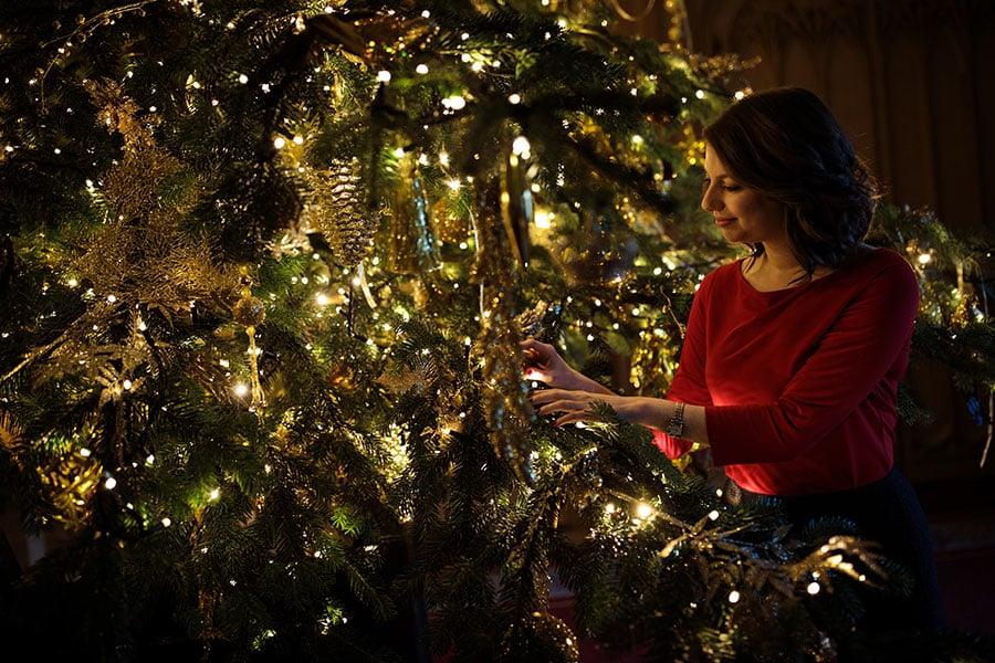 聖誕樹是聖誕節必不可少的標誌性物品,當歐洲家庭圍繞在燈光閃爍、掛滿禮品的聖誕樹旁,很少有人會去想,這些樹到底來自何處?(Jack Taylor/Getty Images)